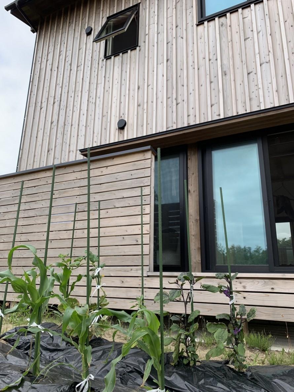アフターメンテナンスで越前浜の家【若蔵】M様邸6か月点検訪問